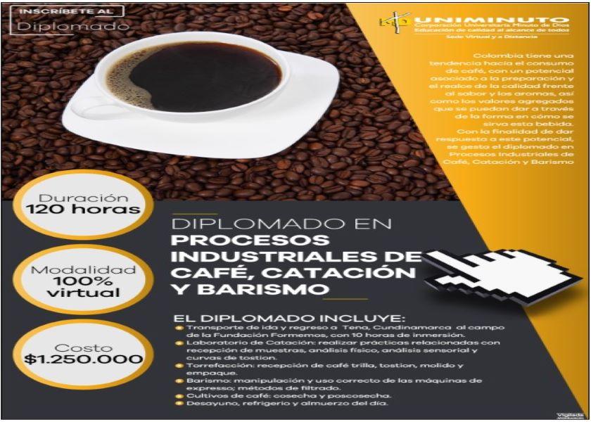 DIPLOMADO EN PROCESOS INDUSTRIALES DEL CAFÉ, CATACIÓN Y BARISMO